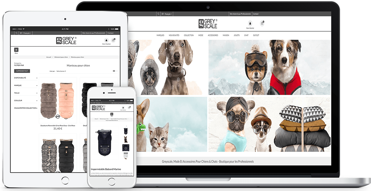 Aperçu réalisation site e-commerce Greyscale